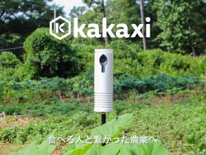 kakaxi4